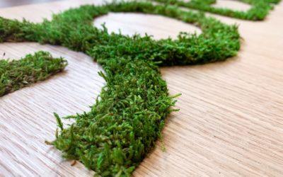 Enseigne végétalisée et bois pour EXCO