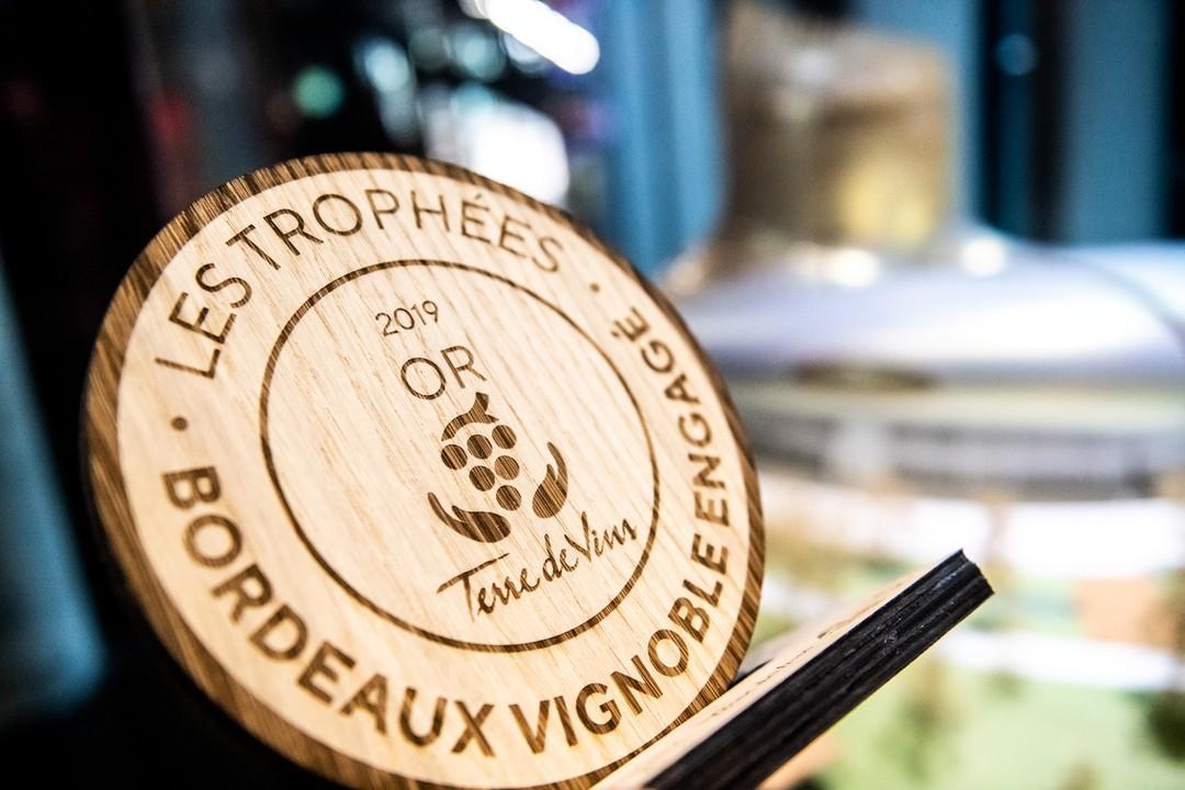 Trophées vignobles bordeaux engagés en bois chêne prix spécial pour magazine Terre de Vins 2019 gravure laser