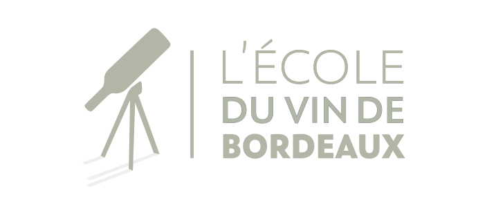 ecole-vin-bordeaux