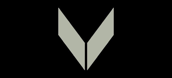 logo - views multimedia