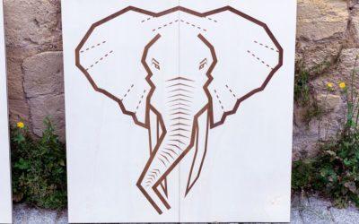 ONG WWF – Des panneaux signalétiques sur-mesure pour le Pandathlon